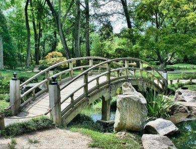 Aranżacja ogrodu a podłoże przepuszczalne – w co zainwestować, by nie betonować?